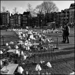 Amsterdam's lights